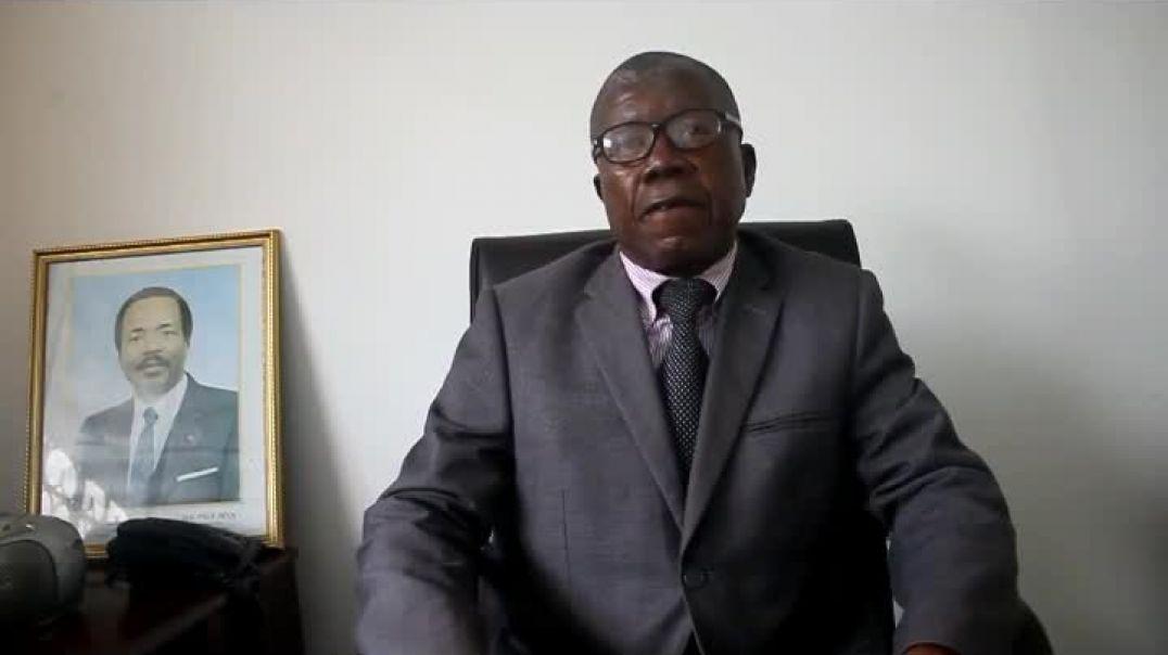 Cameroun Flashback Can 2017 le revers de la victoire des lions indomptables 16 jan 2017   par Vincen